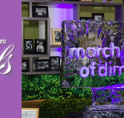 March of Dimes ice sculpture